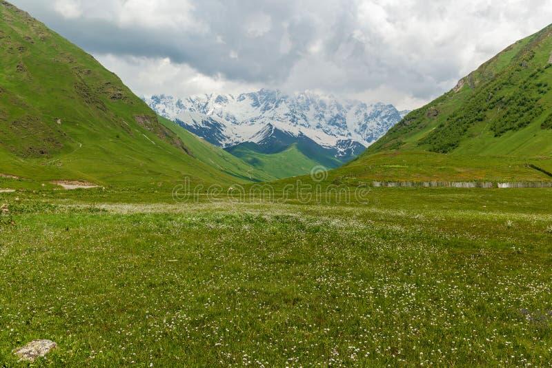 与山峰的风景在乔治亚 免版税库存照片