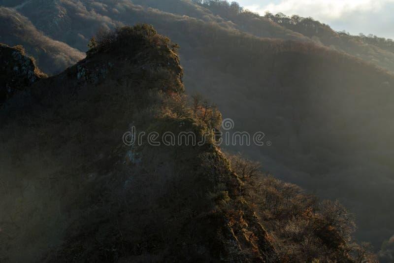与山森林光秃的树和没有雪的风景在北高加索地区 免版税库存照片