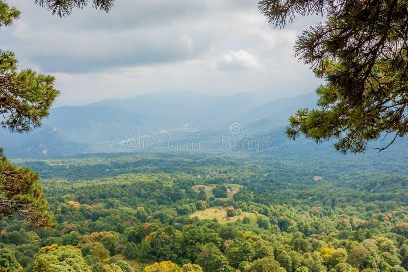 与山森林的风景风景 库存照片