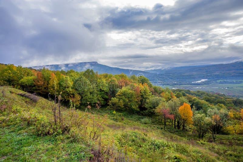 与山森林的风景风景 图库摄影