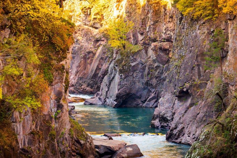 与山河和森林的秋天风景 免版税库存图片