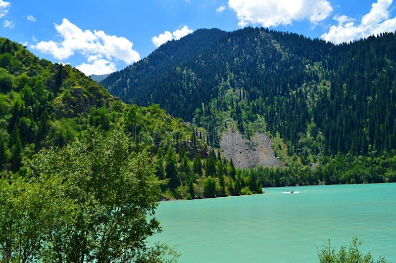 与山湖Issyk,国家公园,哈萨克斯坦的Idillyc 7月风景 库存图片
