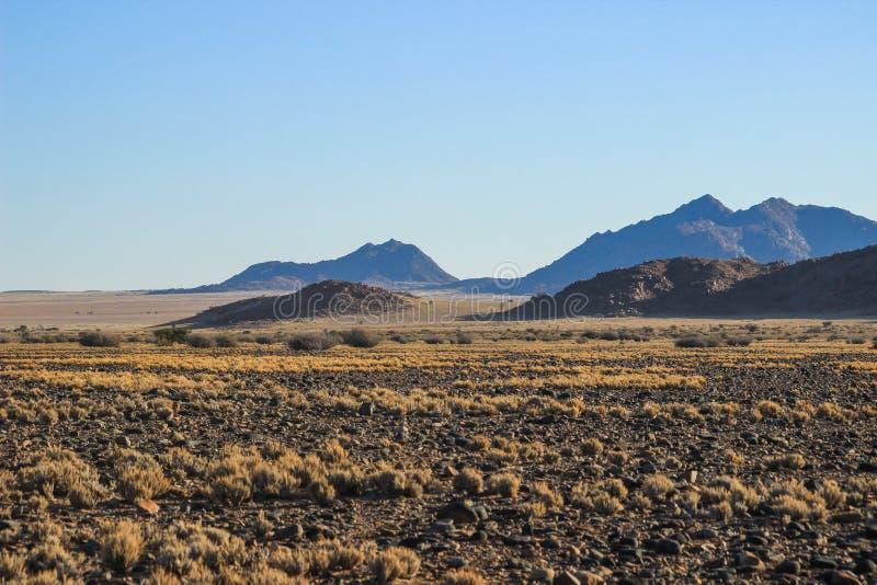 与山的沙漠风景在纳米比亚的南部 旱季,干燥植被 免版税库存图片
