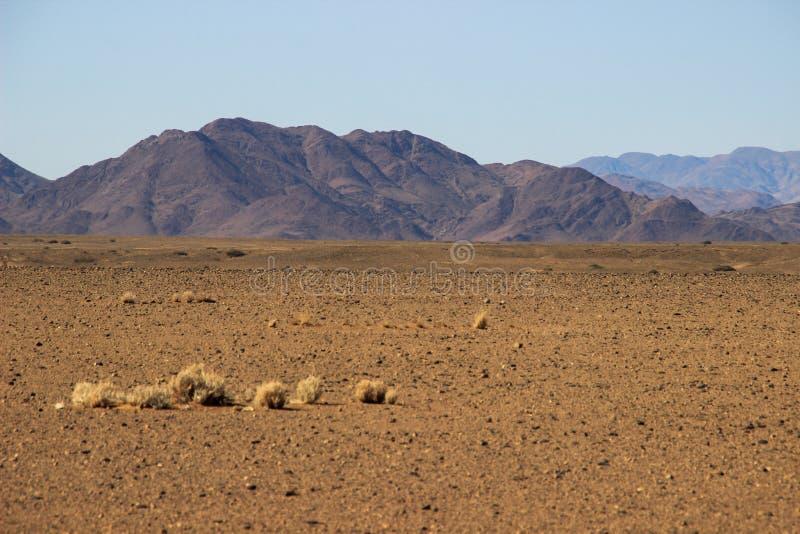 与山的沙漠风景在纳米比亚的南部 旱季,干燥植被 图库摄影