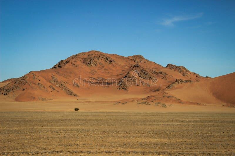 与山的沙漠风景在纳米比亚的南部 旱季,干燥植被 库存照片