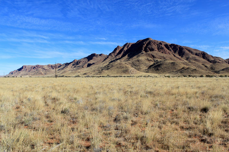 与山的象草的大草原在背景, Namib Naukluft公园中 库存图片