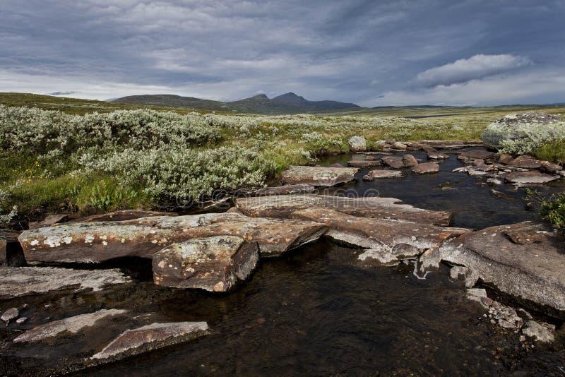 与山的Stoney小河在背景中 图库摄影
