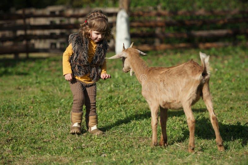 与山羊的逗人喜爱的小女孩戏剧 免版税图库摄影