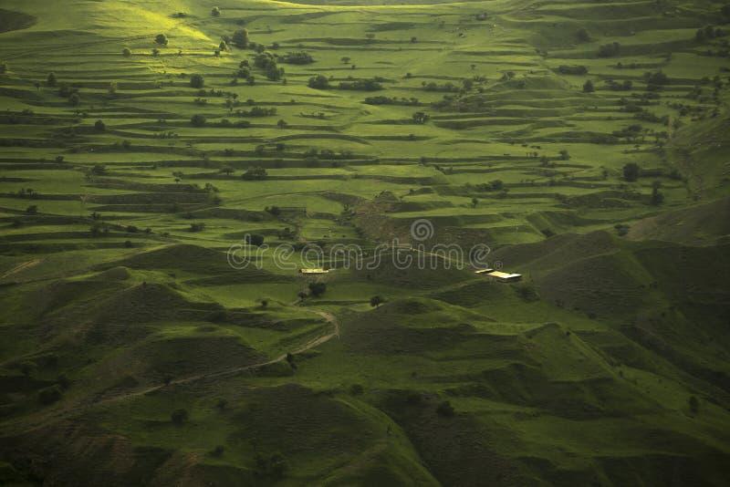与山领域的绿色风景 免版税库存照片