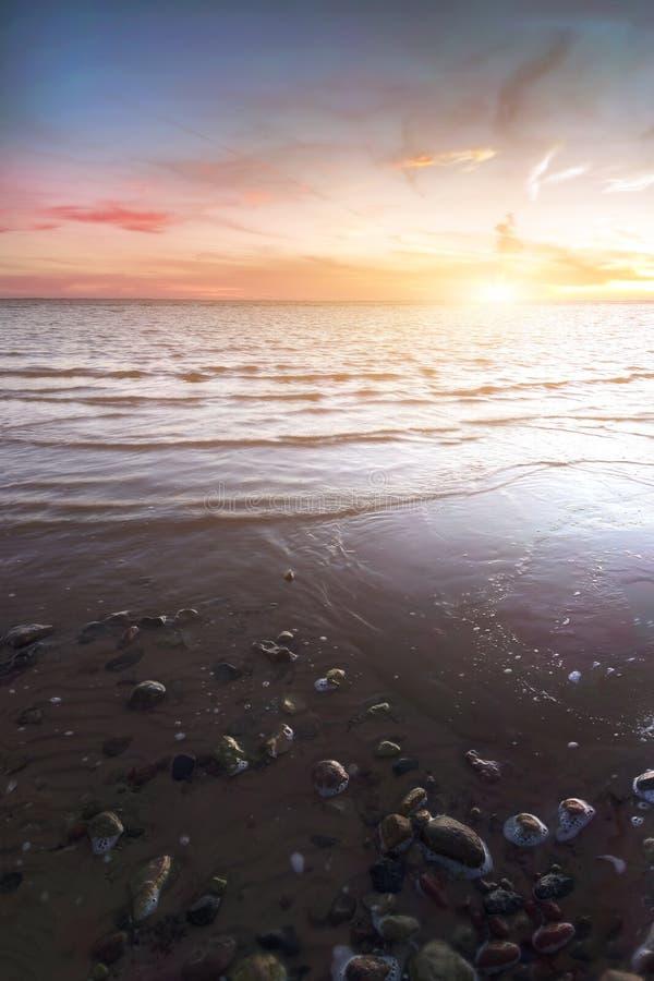 与岩石和起泡沫的沙滩 爱沙尼亚 库存照片