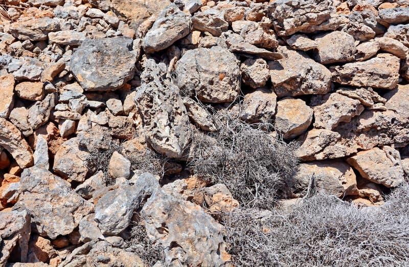 与岩石的土壤和干旱 免版税库存图片