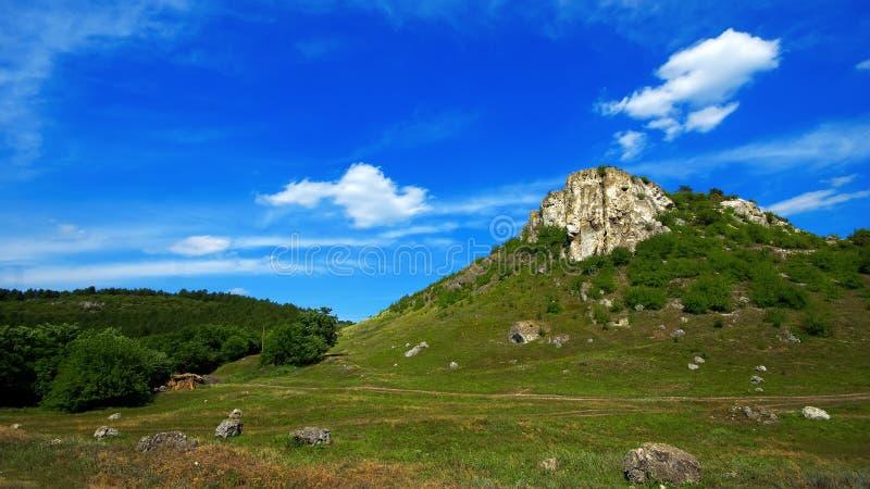 与岩石的森林风景 免版税图库摄影