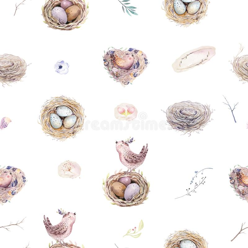与巢、鸟、分支、树枝杈和羽毛的水彩春天土气样式 水彩无缝的手拉的鸟 向量例证