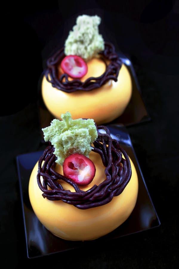 与巧克力巢装饰、蔓越桔和开心果海绵的橙色奶油甜点点心 库存照片