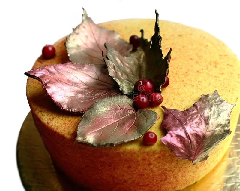 与巧克力枫叶和蔓越桔的五颜六色的织地不很细橙色蛋糕 免版税图库摄影