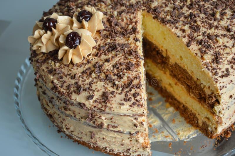 与巧克力片和奶油花的奶油蛋糕 库存照片