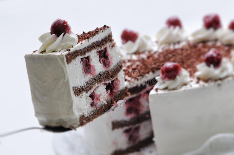 与巧克力片和樱桃的奶油色蛋糕在金属匙子,在白色板材,法式蛋糕铺,商店的摄影的生日蛋糕 图库摄影