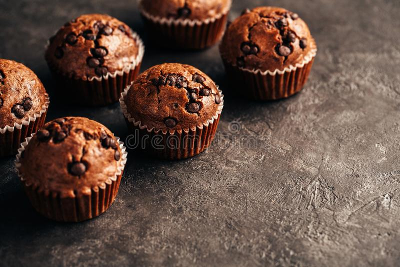 与巧克力片的巧克力松饼 库存照片
