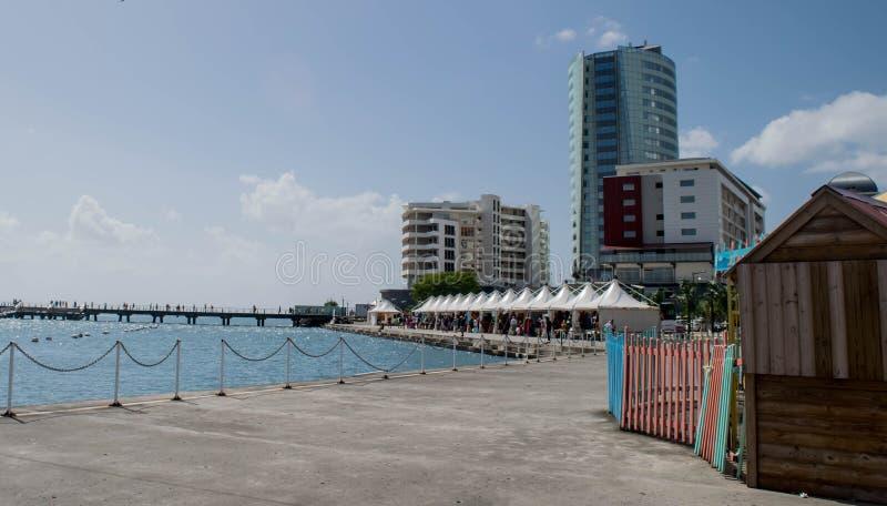 与市场和都市大厦的马提尼克岛码头场面 免版税图库摄影