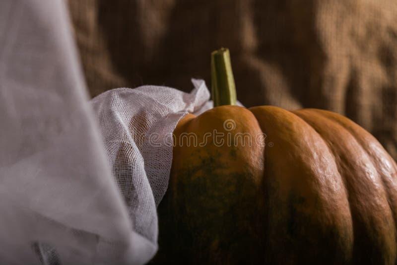 与布料的未加工的南瓜属 免版税库存图片