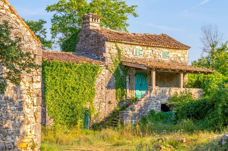 与常春藤和草的老石地中海房子废墟 免版税库存图片