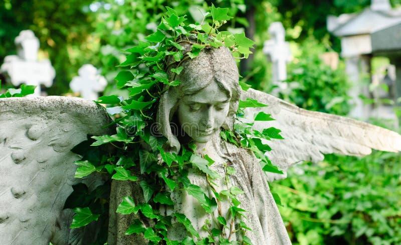 与常春藤的天使雕象 免版税库存照片
