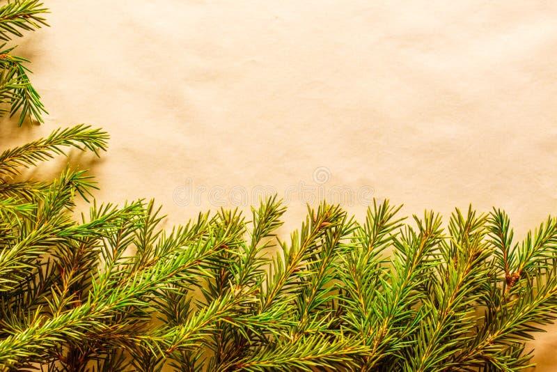 与常青冷杉木分支的圣诞节背景 免版税库存照片