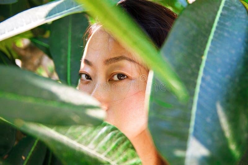 与干净的皮肤,新鲜的典雅的夫人的亚洲秀丽面孔特写镜头画象 免版税库存图片