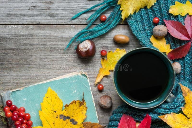 与干燥叶子的秋天背景,围巾、咖啡用香料和葡萄酒预定 库存照片