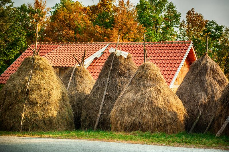 与干草堆的夏天农村风景在小村庄 图库摄影