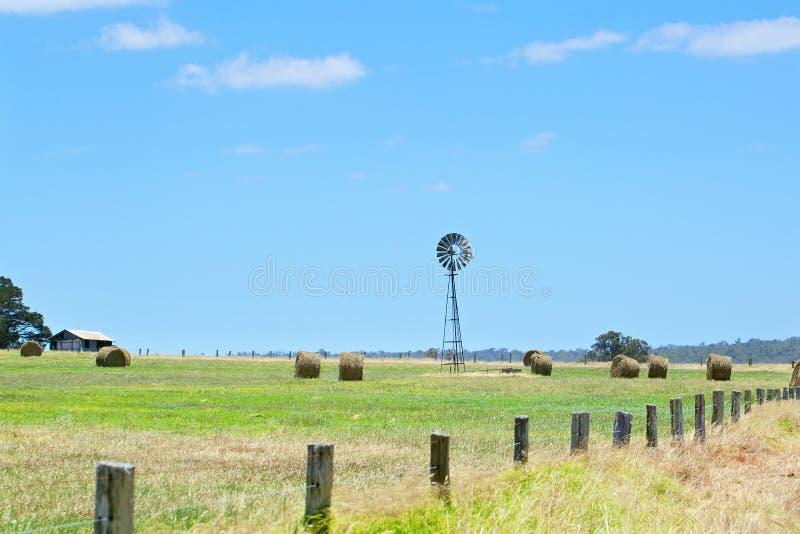 与干草堆的澳大利亚农村领域风景 库存照片
