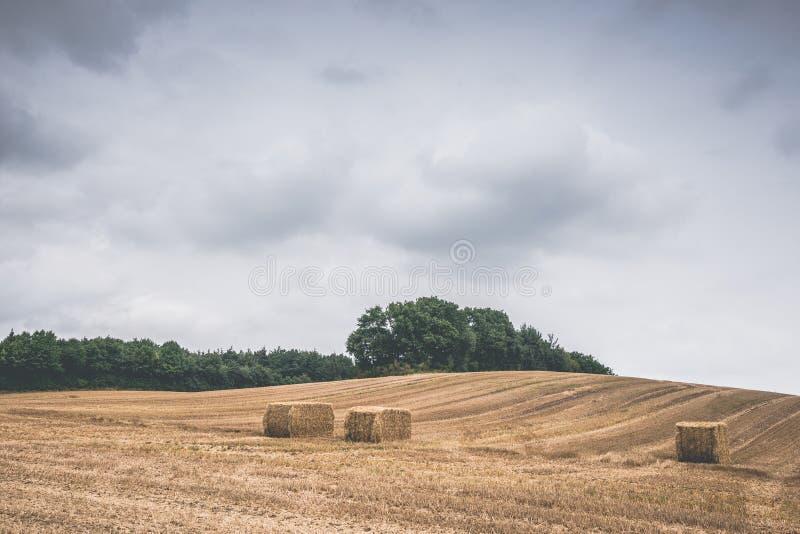 与干草捆的乡下风景在一个被收获的领域 库存照片