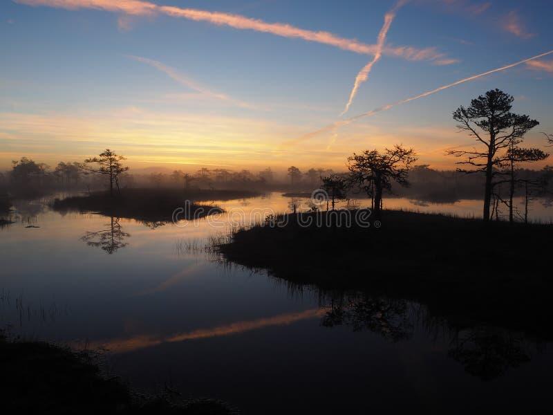与平面轨道的Kakerdaja沼泽在天空 库存图片