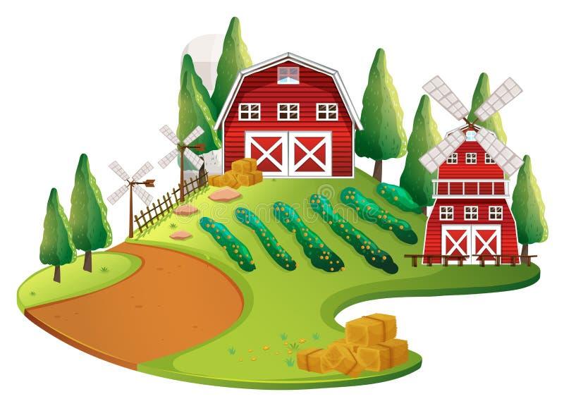 与庄稼和谷仓的农厂场面 皇族释放例证