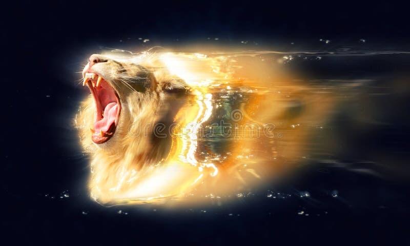 与开放下颌的白色狮子,抽象动物概念 库存图片