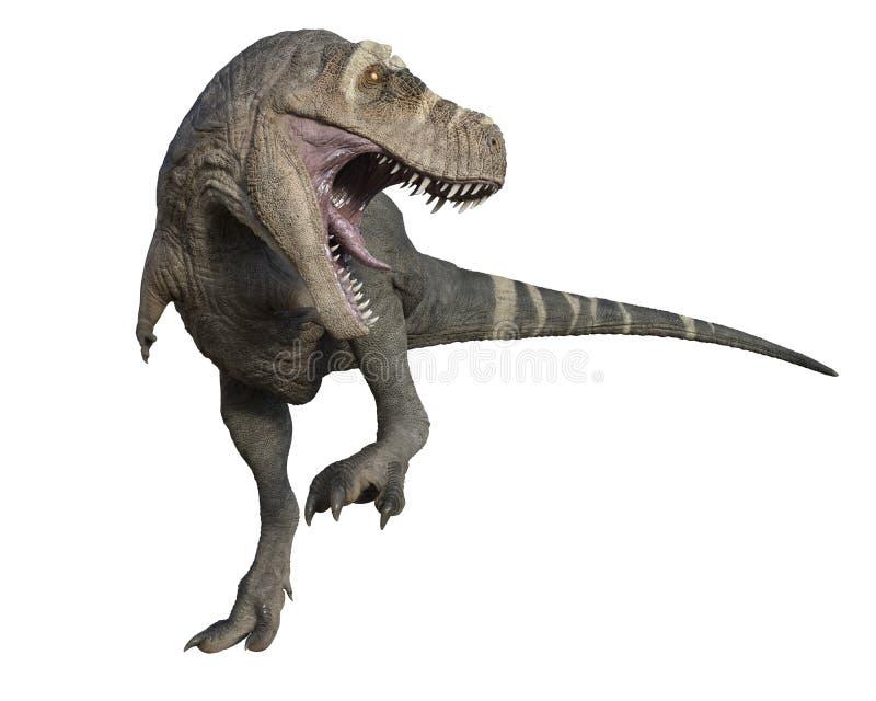 与开放的嘴的积极的T雷克斯恐龙 免版税库存照片