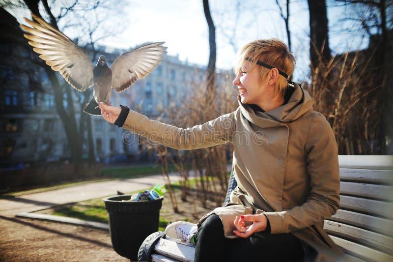 与开放翼的鸠坐女孩的手 库存图片