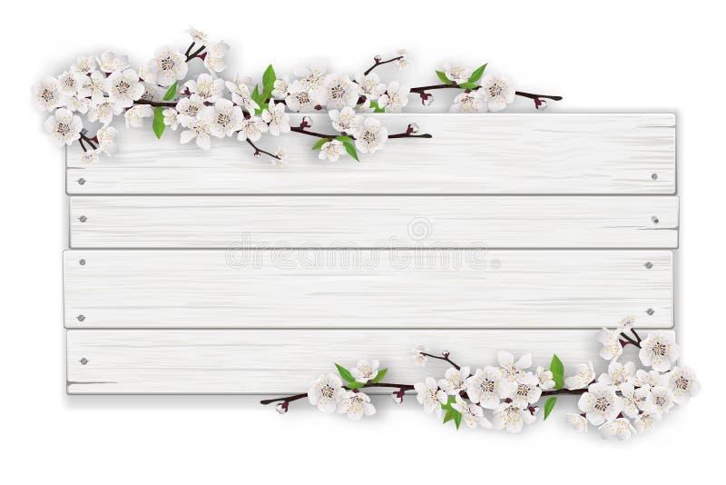 与开花的树枝的空的白色木标志 库存例证