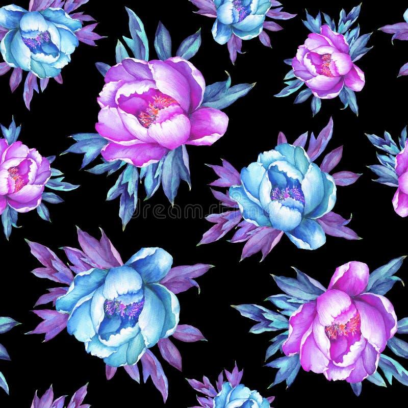 与开花的桃红色和蓝色牡丹的花卉无缝的样式,在黑背景 水彩手拉的绘画例证 向量例证