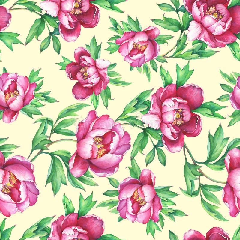 与开花的桃红色牡丹的花卉无缝的样式,在黄色背景 向量例证