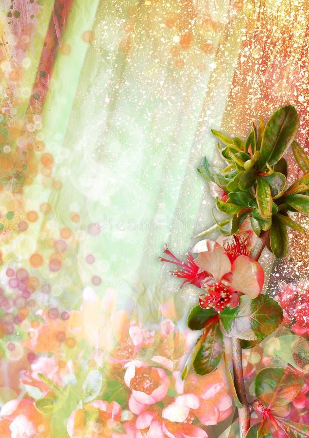 与开花的花的抽象背景和光线和强光 皇族释放例证