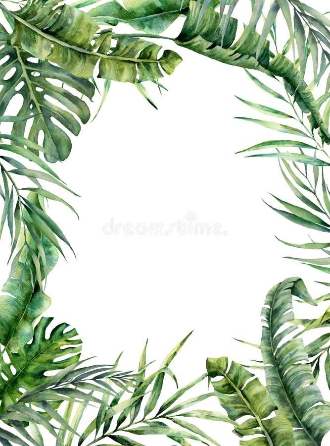 与异乎寻常的叶子的水彩热带框架 手画花卉例证用香蕉,椰子和monstera分支 图库摄影