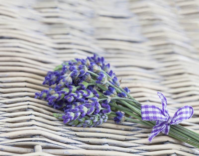 与弓的淡紫色花束 库存照片
