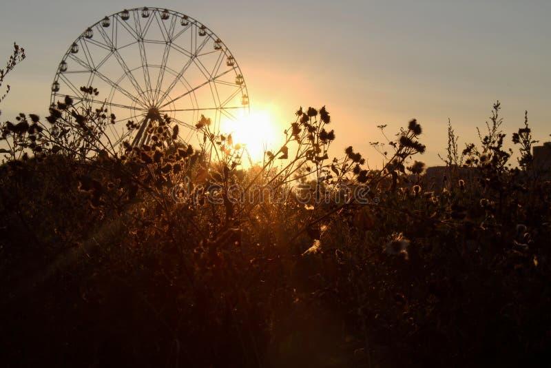 与弗累斯大转轮和日落的剪影的美好的风景在欧洲 免版税库存照片