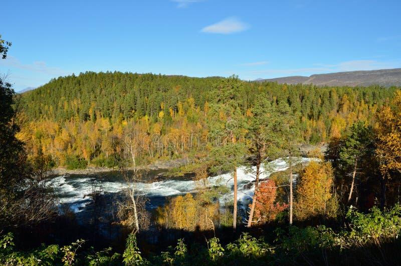 与强大咆哮瀑布的庄严五颜六色的秋天风景 免版税库存图片