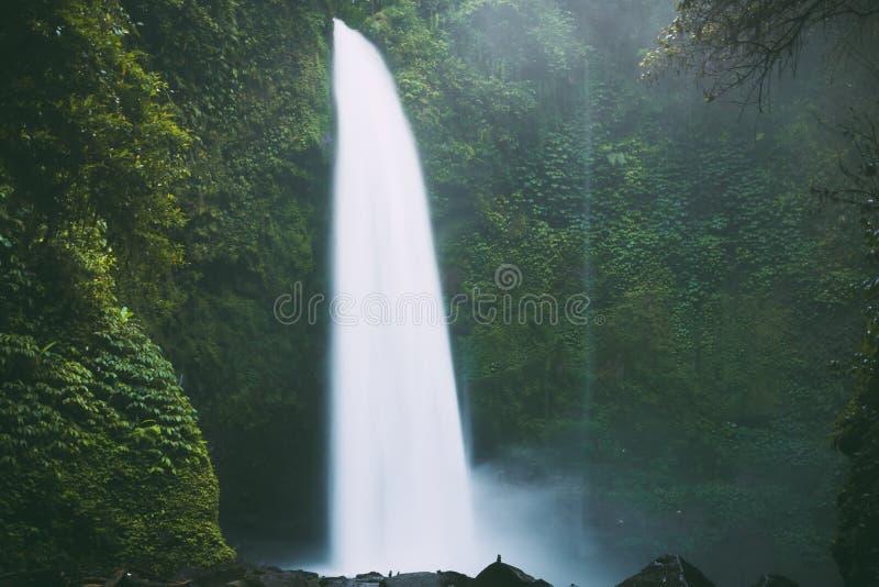 与强有力的流程的最大的瀑布在巴厘岛,印度尼西亚 库存图片