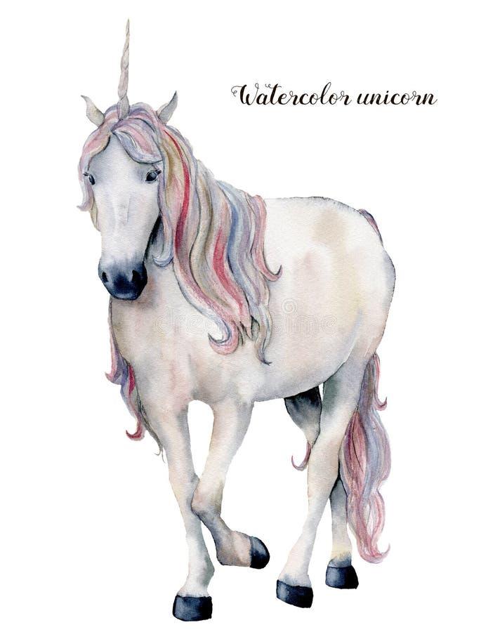 与彩虹头发的水彩白色独角兽 在白色背景隔绝的手画不可思议的马 童话字符 皇族释放例证