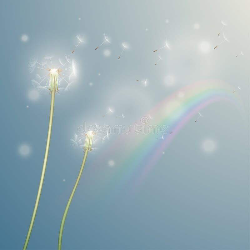 与彩虹的蒲公英例证 库存例证