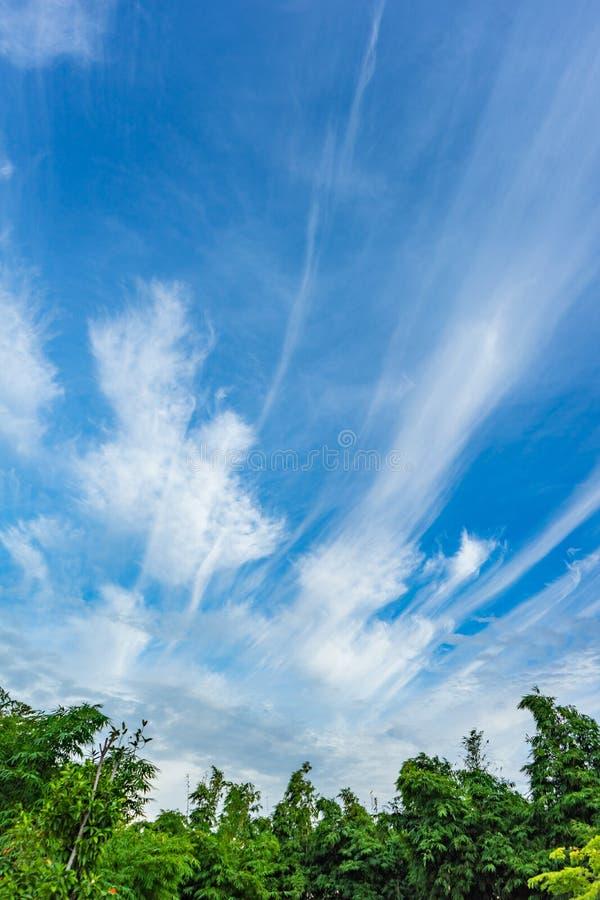 与很少云彩的天空在线形 免版税库存图片