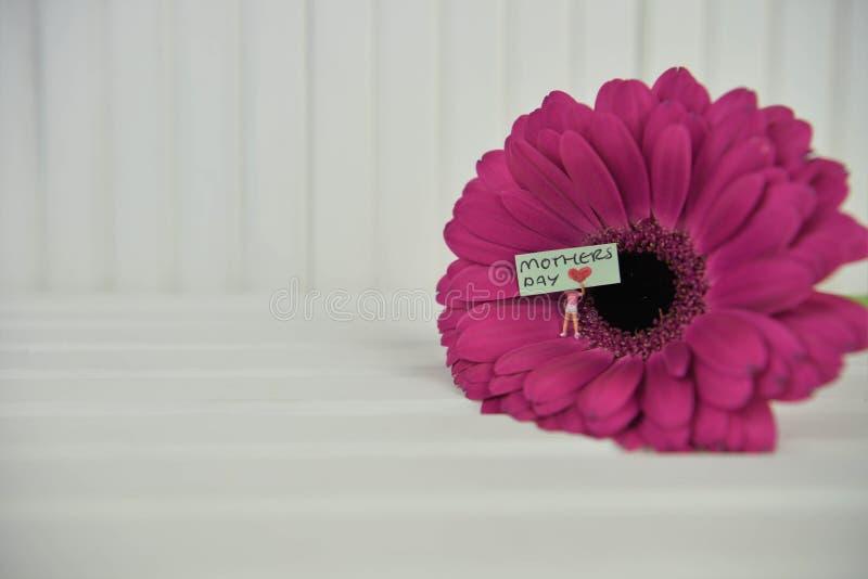 与微型标志和词的明亮的五颜六色的大丁草雏菊花为母亲节 免版税图库摄影